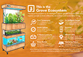 Grove Marketing